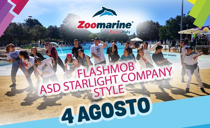 ASD STARLIGHT COMPANY STYLE