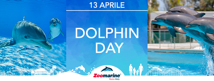 DOLPHIN DAY