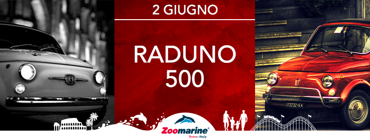 RADUNO 500