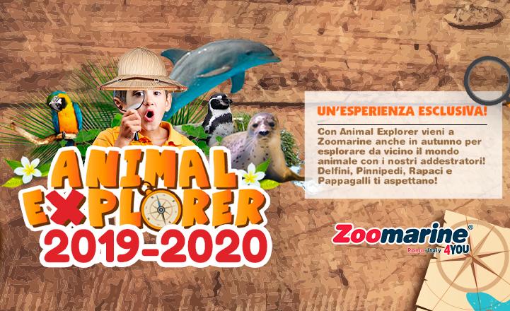 ANIMAL EXPLORER